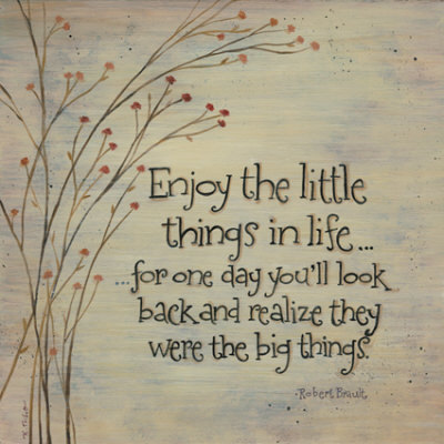 Enjoy-the-little-things_large