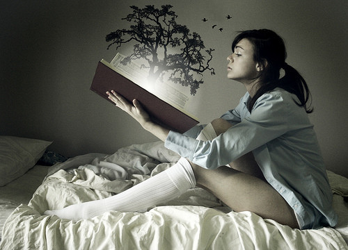 Birds,book,conceptual,emotive,photography,reading-aa4f09a8de4b3d94d82431e738efaecf_h_large
