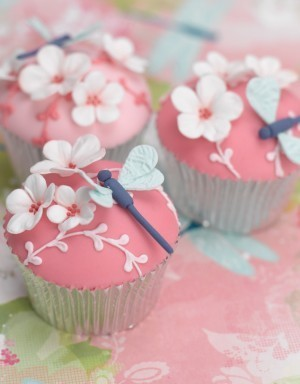 1.1 Cakes and calories / Beautiful dragonfly cupcakes.