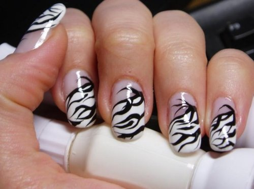 Very Best Zebra Nail Designs 500 x 373 · 30 kB · jpeg