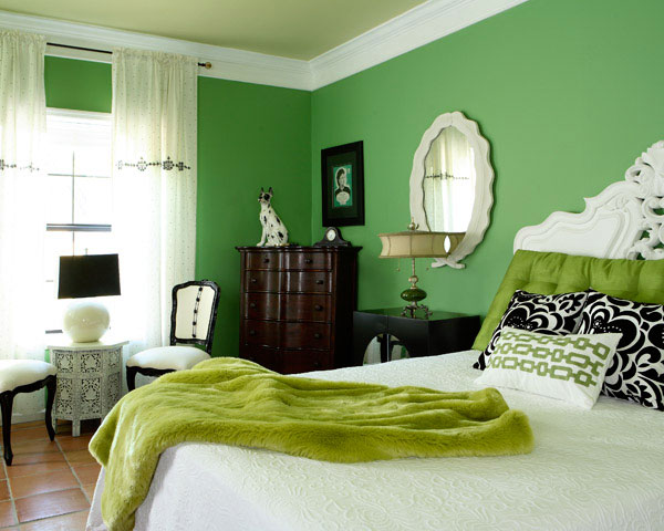 Colors For A Room interior design. how are the colors and their moods?: green room