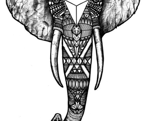 1000 Images About Zentangle Animals On We Heart It See