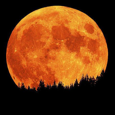 ~ : | The Moon | : ~