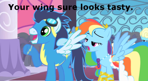 Image result for MLP Rainbow Dash funny