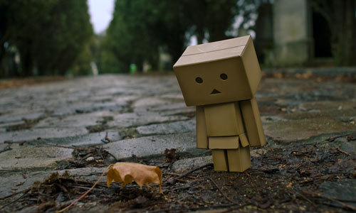 Leaf-with-danbo_large
