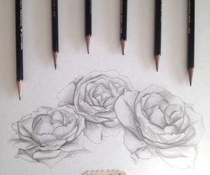 the_lovely_drawing
