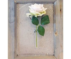 frame with vase and rose