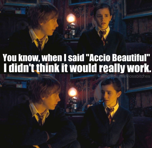 Accio-beautiful-harry-potter-vs-twilight-18451801-500-487_large