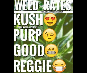 Weed Rates Tbh Pictures With Weed