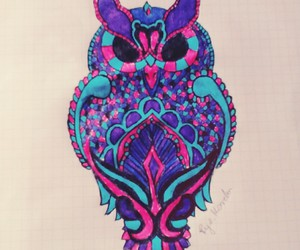 drawing art owl colours