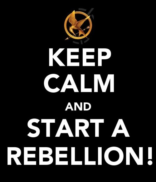 Keep-calm-the-hunger-games-24963317-500-583_large