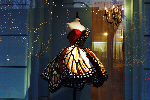 Black-bokeh-butterfly-butterfly-dress-butterfly-wings-favim.com-134154_large