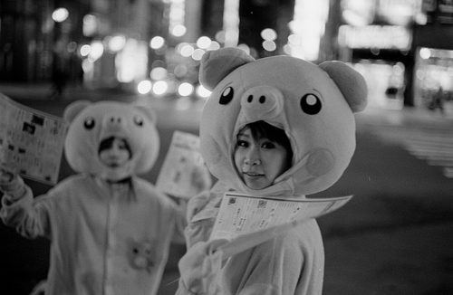 Cute Pig cosplay advertising