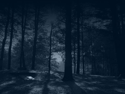 Dark_forest_by_sonnenradbanner_large