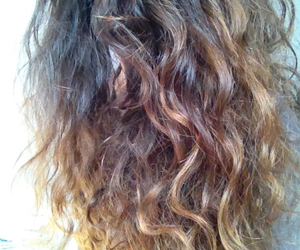 ombre hair curly lion