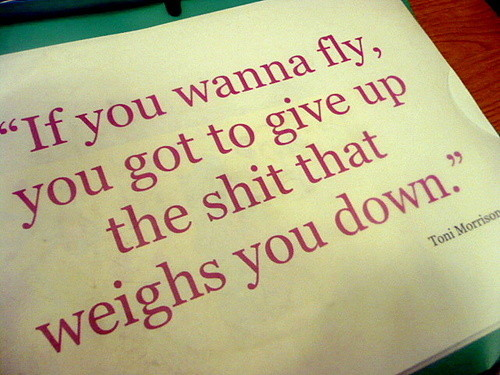 Fly,quote,ddfsdfsd,sdsfsfs,ambition,success-73071056ec9aac90f80e2f94bf140622_h_large