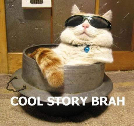 http://data.whicdn.com/images/14944981/1897cool-story-brah-cat_large.jpg