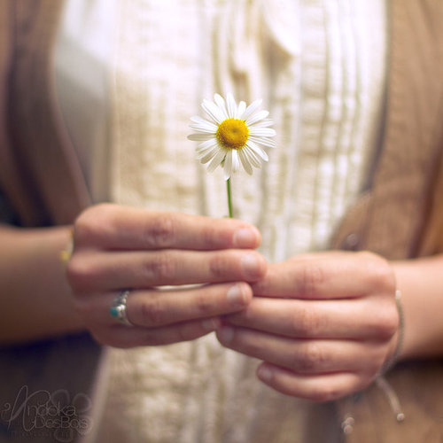 She_took_spring_in_her_hands__by_andokadesbois-d3h67r4_large