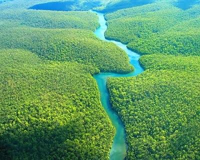 Amazonia-1_large