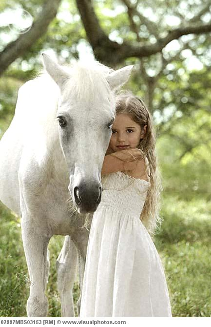 Young Girl Hugging White Horse 02997mbs03153 Gt Stock Photos Royalty Free Royalty Free
