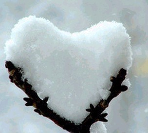 Photography / snow-heart-ice-cold.jpg (Image JPEG, 304x273 pixels)