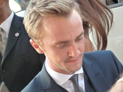 Actor Tom Felton at the Hollywood Movie Premiere of Rise of the Planet of the Apes | Flickr – Compartilhamento de fotos!