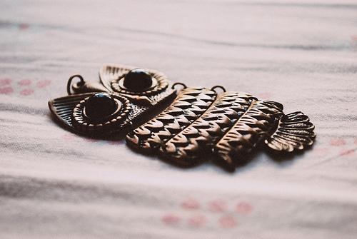 Jewelry-necklace-owl-favim.com-159417_large