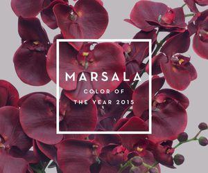 marsala