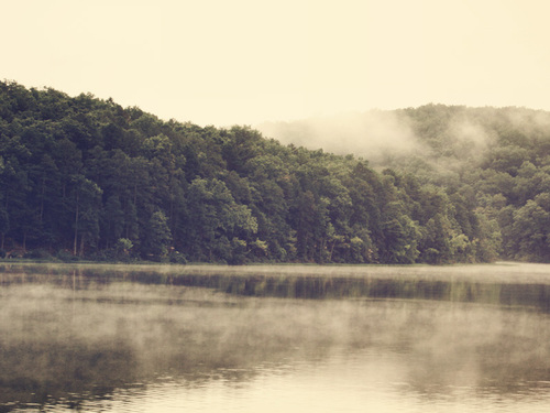 110916_foggywaters_large