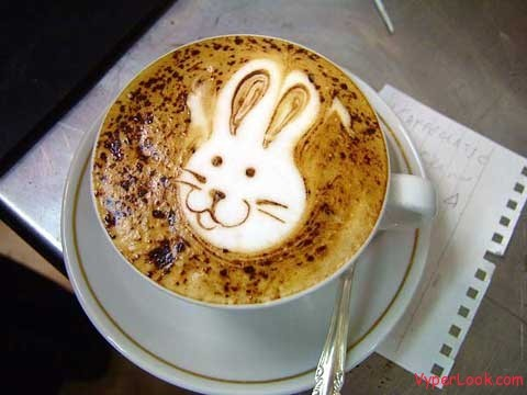 http://data.whicdn.com/images/15684792/coffee-bunny_large.jpg
