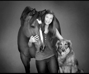 horses dogs love family