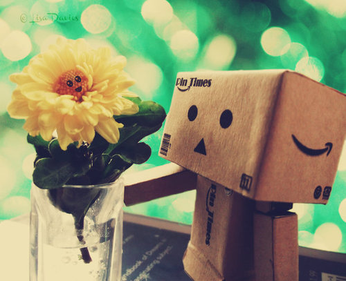 Danbo_and_his_flower_friend_by_mavigozlum-d4cfojg_large