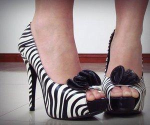 zapatos ; zebra