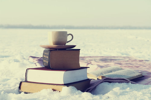 books_and_snow4_by_justkirav1_large.jpg