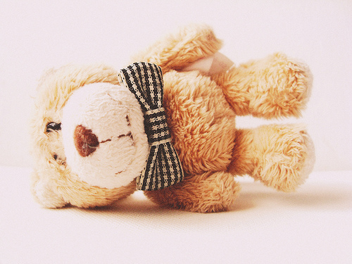 Bear-cute-photography-ribbon-smile-favim.com-184088_large