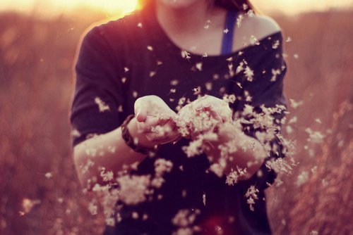 Flowers-girl-hands-lovely-photography-favim.com-188018_large