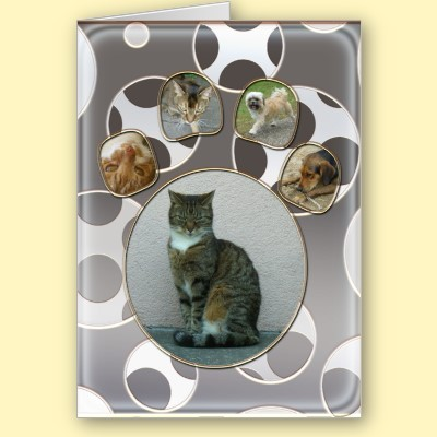 pet care photo card p1370631602324454086idnt 400 large Pet Care Photo Card from Zazzle.com