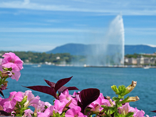 Postcard_from_geneva_by_agivega-d46ixcp_large