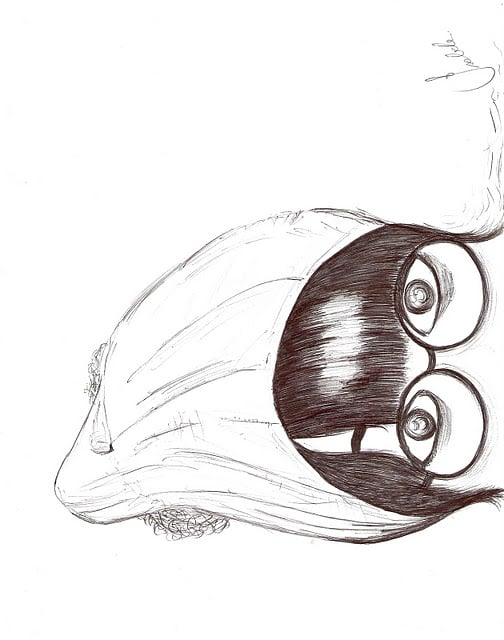 caneta, desenhar, and franja image
