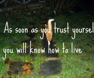 trust yourself live