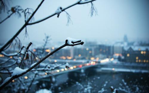Winter's coming ❅
