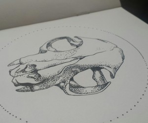 skull cat drawing
