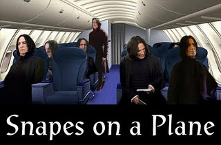 Snapesonaplane_large