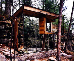 forest woods architecture