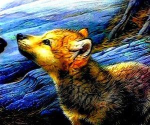 wolf cute