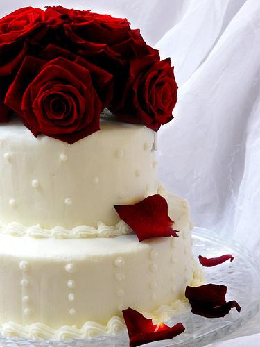 Cake16_large