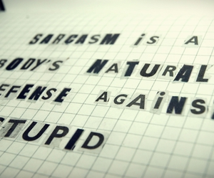sarcasm stupid text