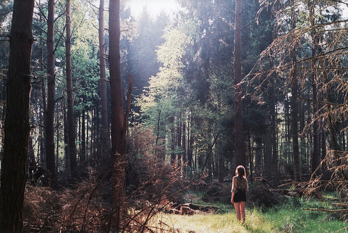 Alone-beautiful-forest-girl-wood-favim.com-204654_large