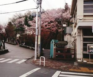 japão japan paisagens