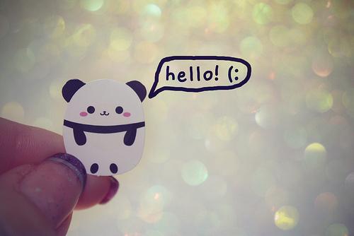 Color-cool-cute-fashion-panda-favim.com-209239_large